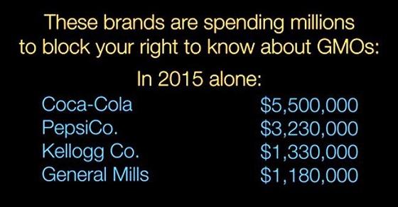 遺伝子組み換え作物表示義務化阻止のために大金を使っている企業(一部):2015年 出典:「We Are Anonymous」