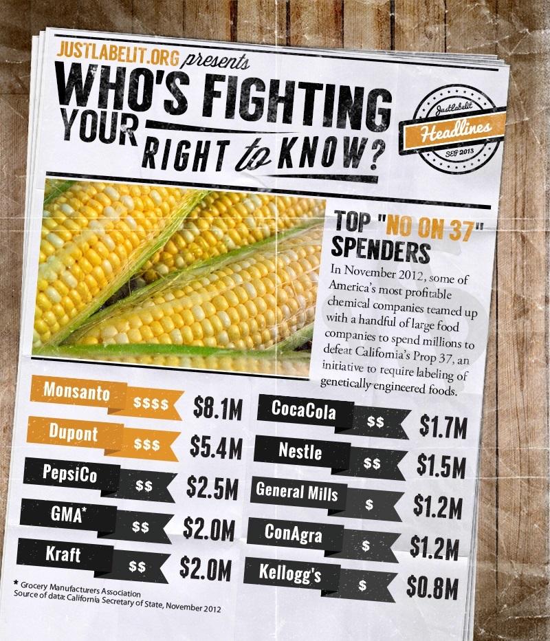 遺伝子組み換え作物表示義務化阻止のために大金を費やした企業(一部):2012年 出典:「We Are Anonymous」