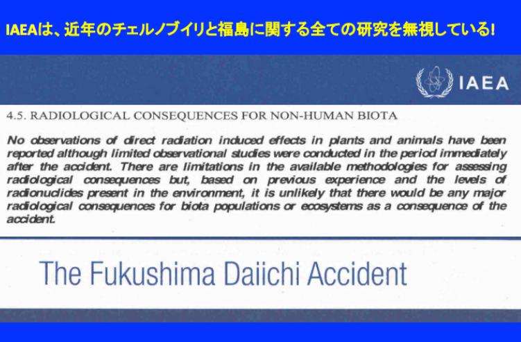 写真:IAEAの福島原発事故報告書(一部)