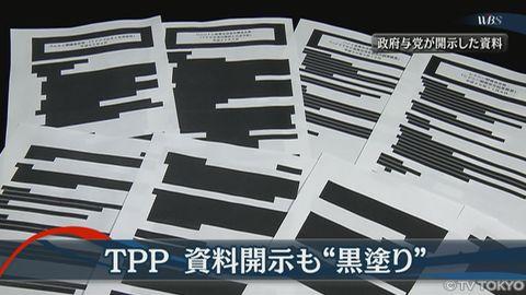 写真(TPP関連の黒塗り文書) 出典:テレビ東京